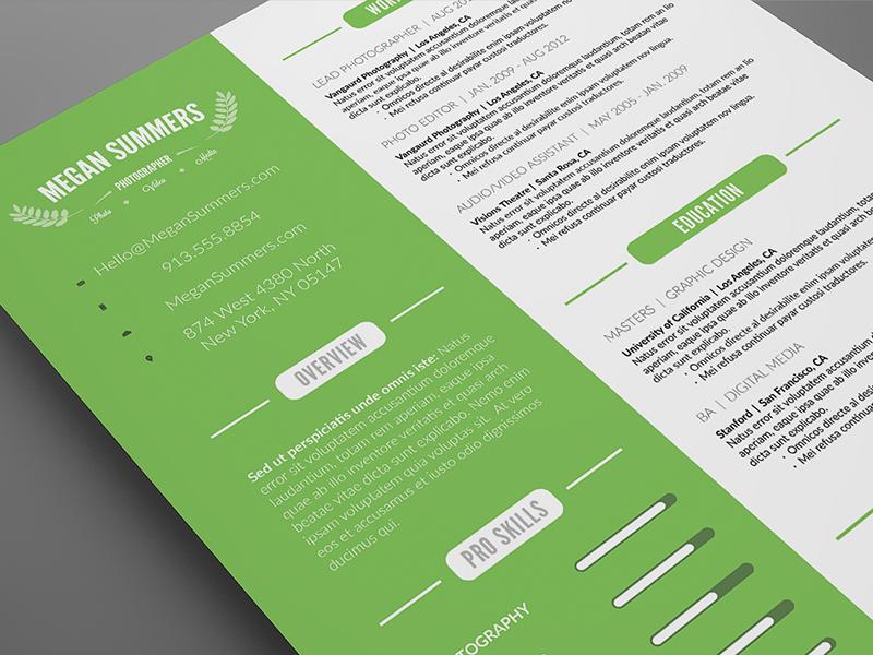 Custom Clean Resume