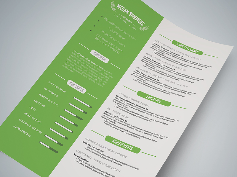 Custom Clean Resume